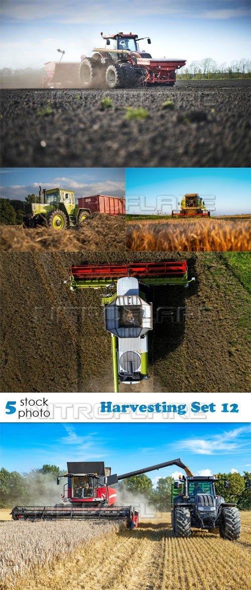 Photos - Harvesting Set 12