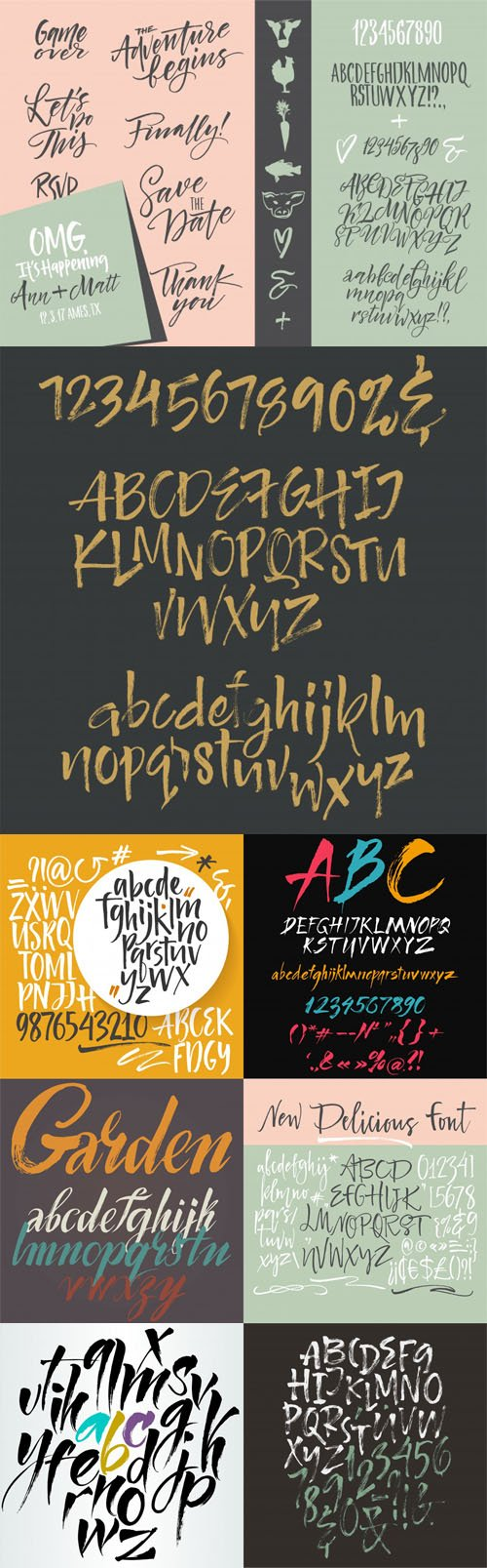 Handwritten Script & Brush Fonts Collection in Vector