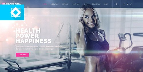 Website Presentation Minimal 18950580 - Project for After Effects (Videohive)