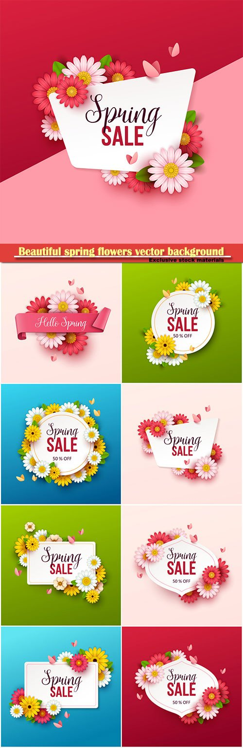 Beautiful spring flowers vector background