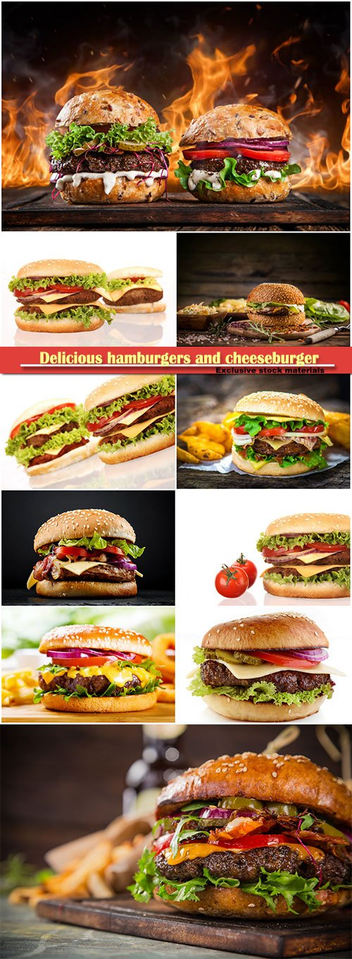 Delicious hamburgers and cheeseburger