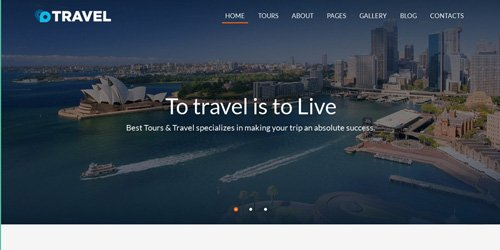CodeSter - Travel v1.0 - Agent And Tour Booking HTML5 Template - 6658