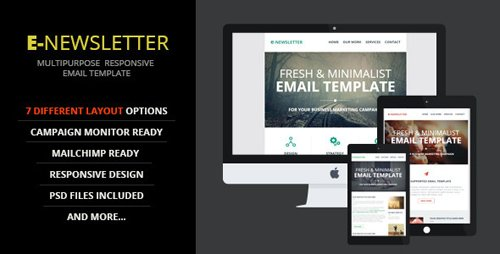 ThemeForest - E-Newsletter v1.0 - Multipurpose Email Template - 9522499