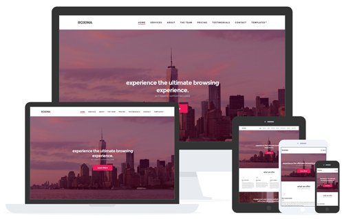 CSSIgniter - Roxima v1.4 - WordPress Theme
