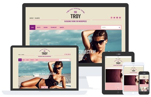 CSSIgniter - Troy v2.5 - WordPress Theme