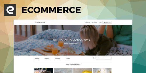 CodeSter - SitePoint Ecommerce v1.0 - WordPress Theme - 3983