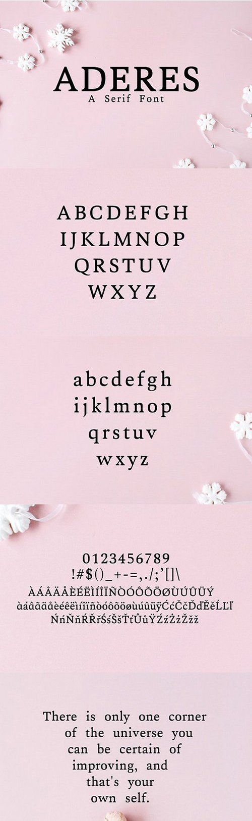 Aderes Serif Font Family 1742309