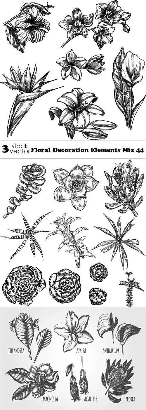 Vectors - Floral Decoration Elements Mix 44