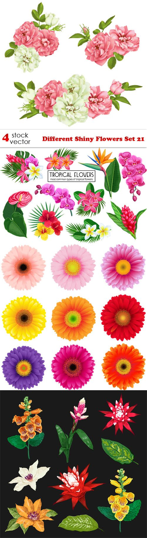Vectors - Different Shiny Flowers Set 21