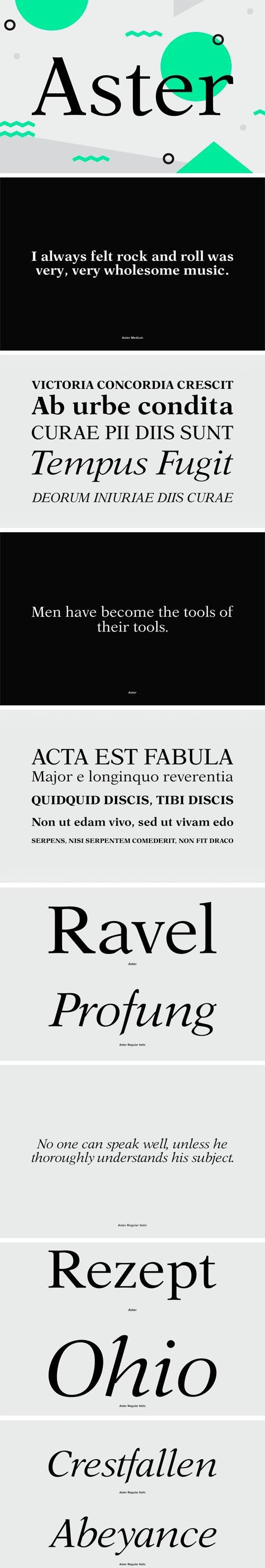 Aster Font Family