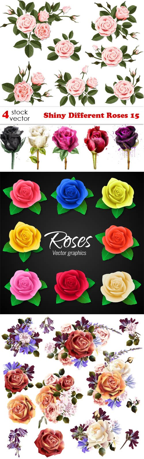 Vectors - Shiny Different Roses 15