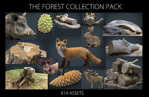The Forest Collection Pack