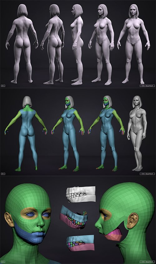 Female BaseMesh - Eve - ZTool