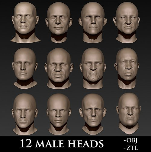 12 Male Heads