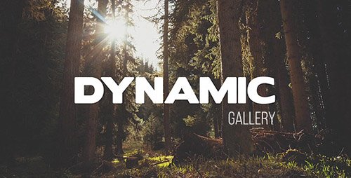 Dynamic Gallery 10470167 - Project for After Effects (Videohive)