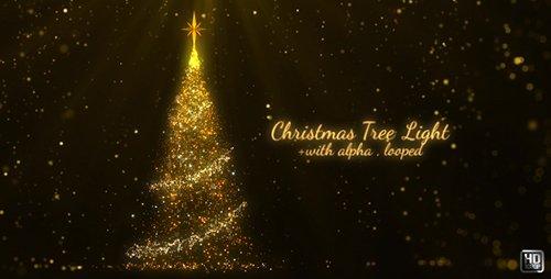 Christmas Tree 21143544