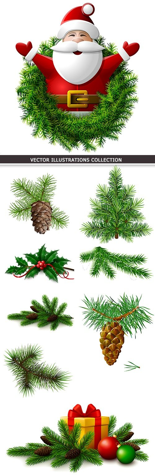Fir-tree branches with cones New Year's illustrations