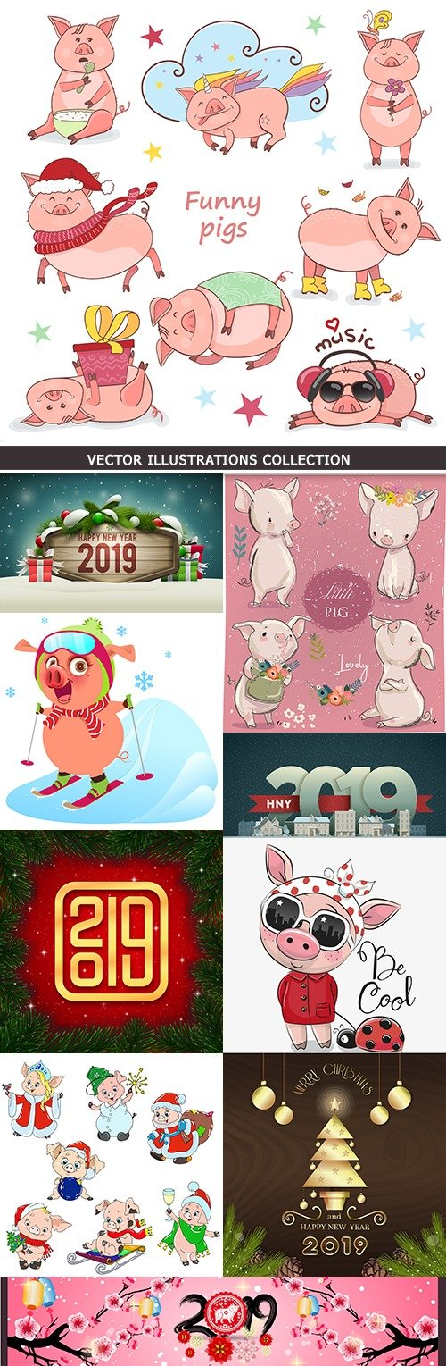 Pig funny and 2019 New Year decorative design collection