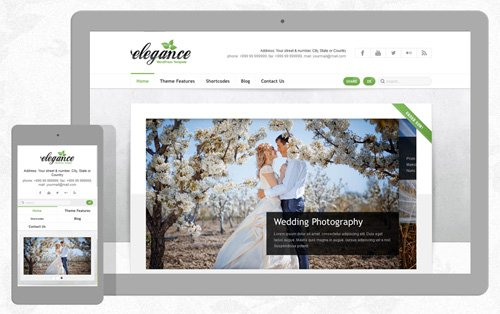 Ait-Themes - Elegance v1.26 - WordPress Theme For Wedding Agencies
