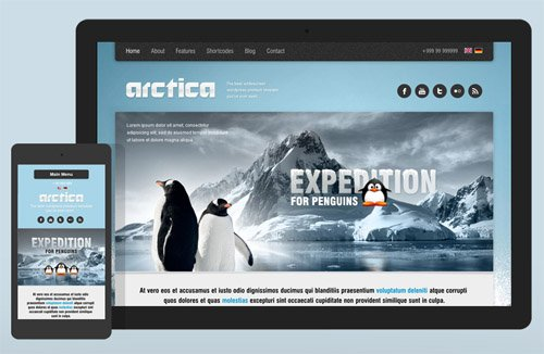 Ait-Themes - Arctica v2.49 - Beautiful WordPress Theme