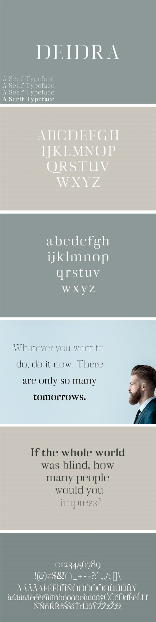 Diedra Serif Font Family Pack 1757769
