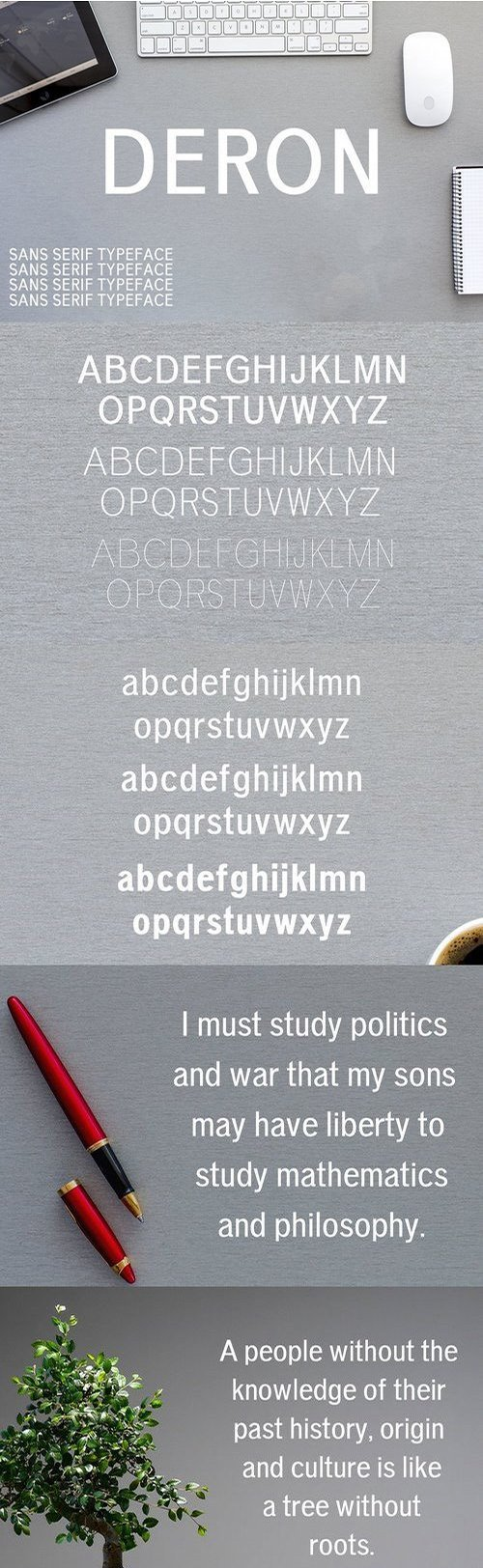 Deron Sans Serif Typeface 1450245