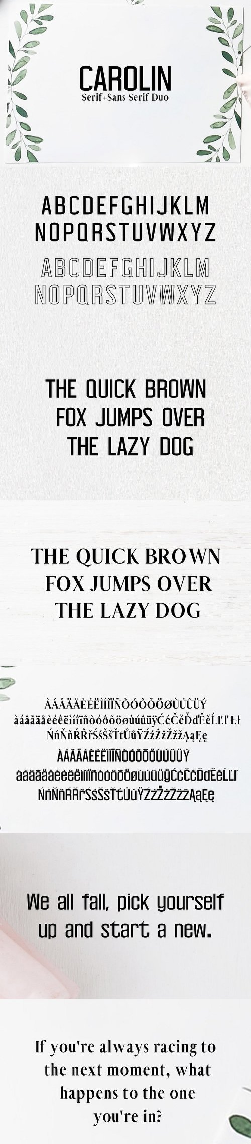 Carolin Duo 5 Font Family Pack 2176255
