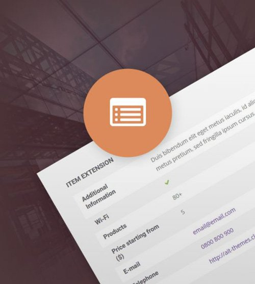 Ait-Themes - Item Extension v1.25 - Item Custom Fields WordPress Plugin