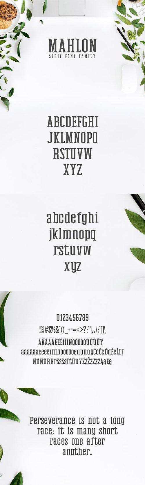 Mahlon Serif Font Family Pack 2319351