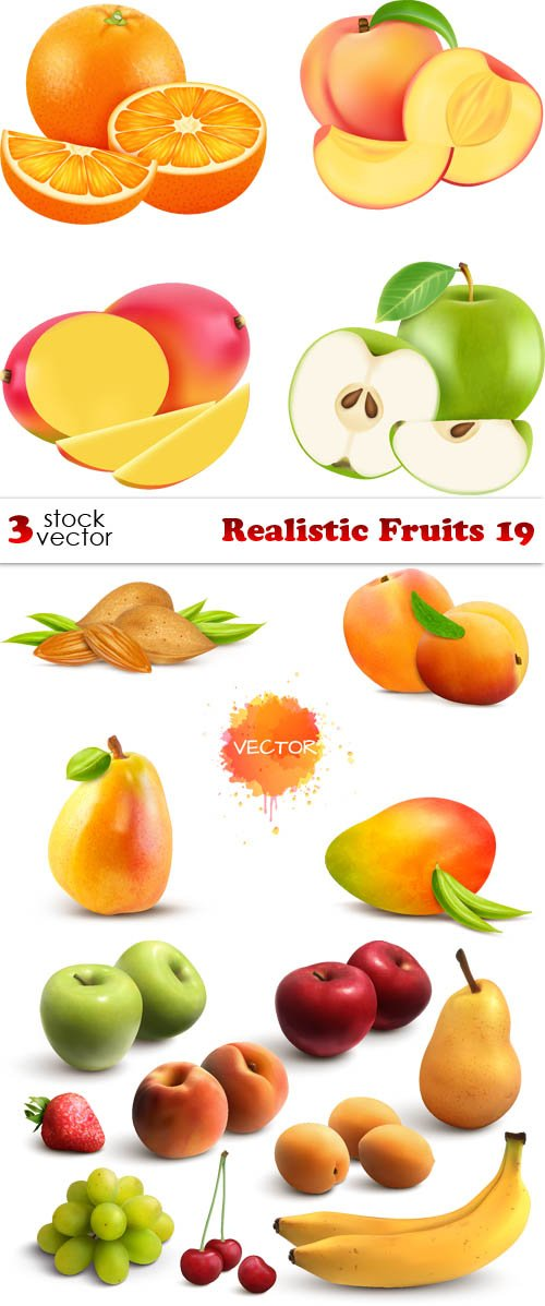Vectors - Realistic Fruits 19