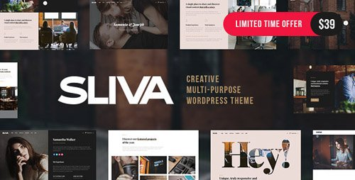 ThemeForest - Sliva v1.0 - Responsive Multi-Purpose Theme (Update: 9 August 18) - 20443790