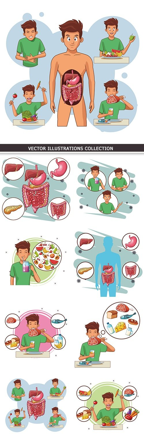 Anatomy digestive organs person cartoon illustration