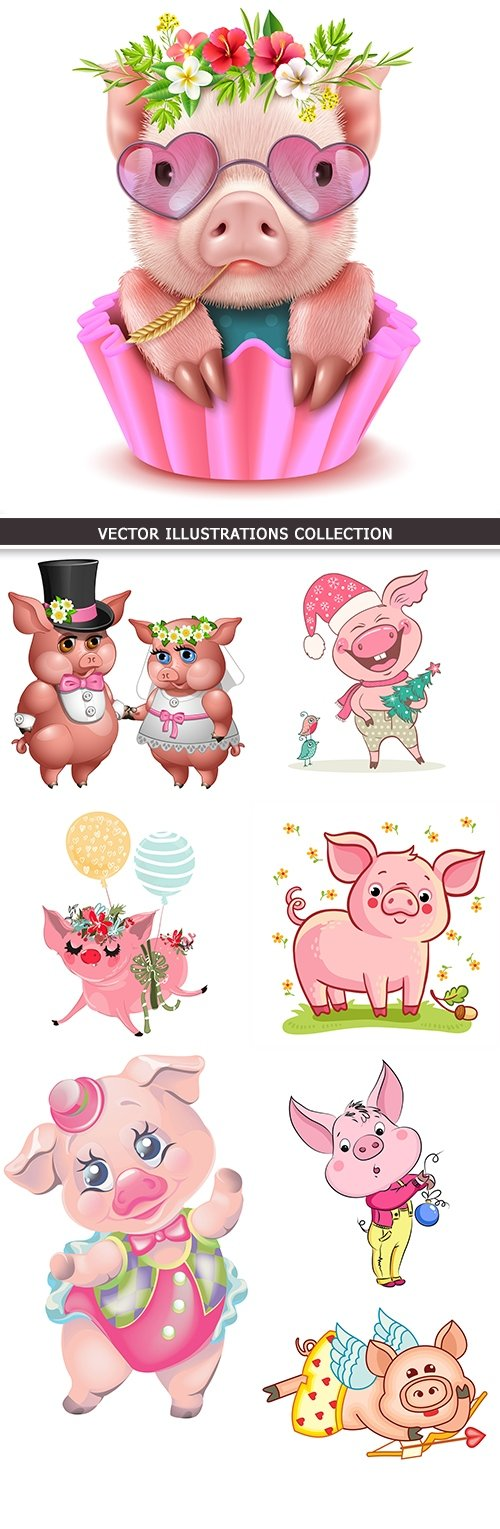 Pig Valentine's Day card and symbol 2019 new year