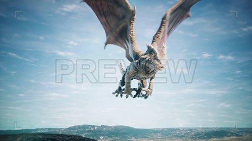 MA - Dragon 140532