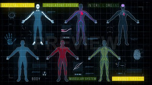 MA - Medical HUD with Body Systems 140273