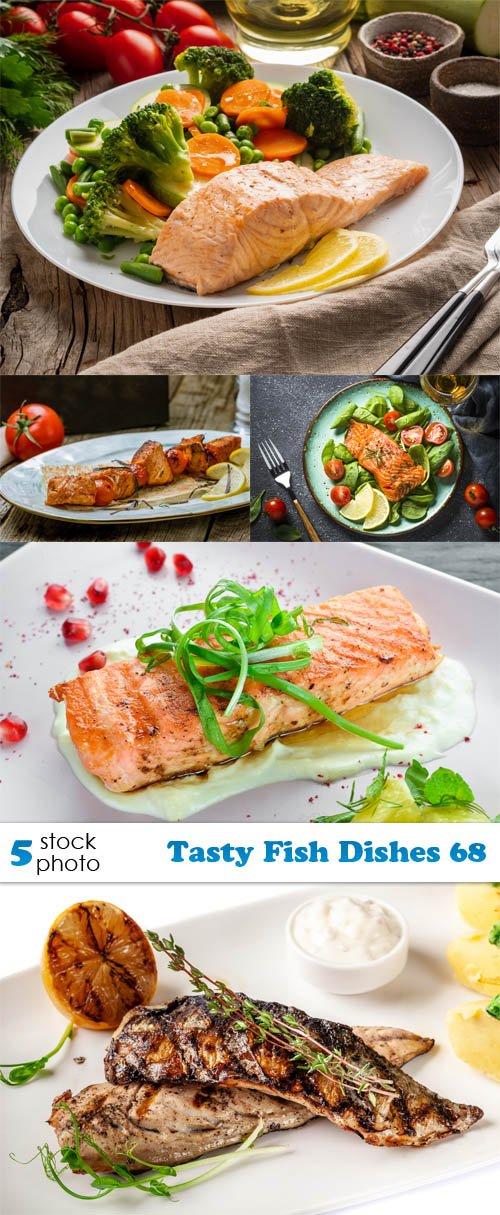 Photos - Tasty Fish Dishes 68