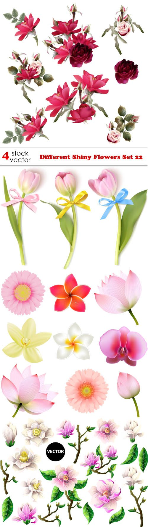 Vectors - Different Shiny Flowers Set 22