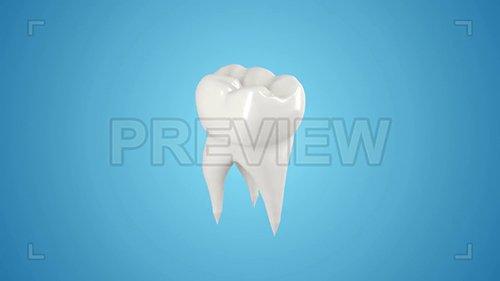 MA - Tooth Loop Pack 133552