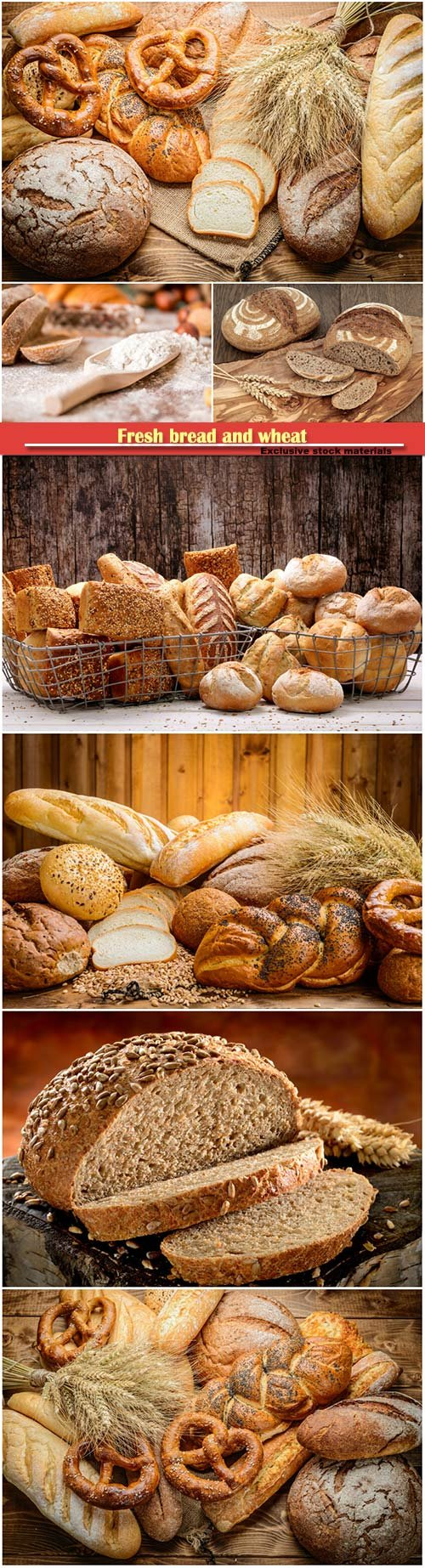 Fresh bread and wheat