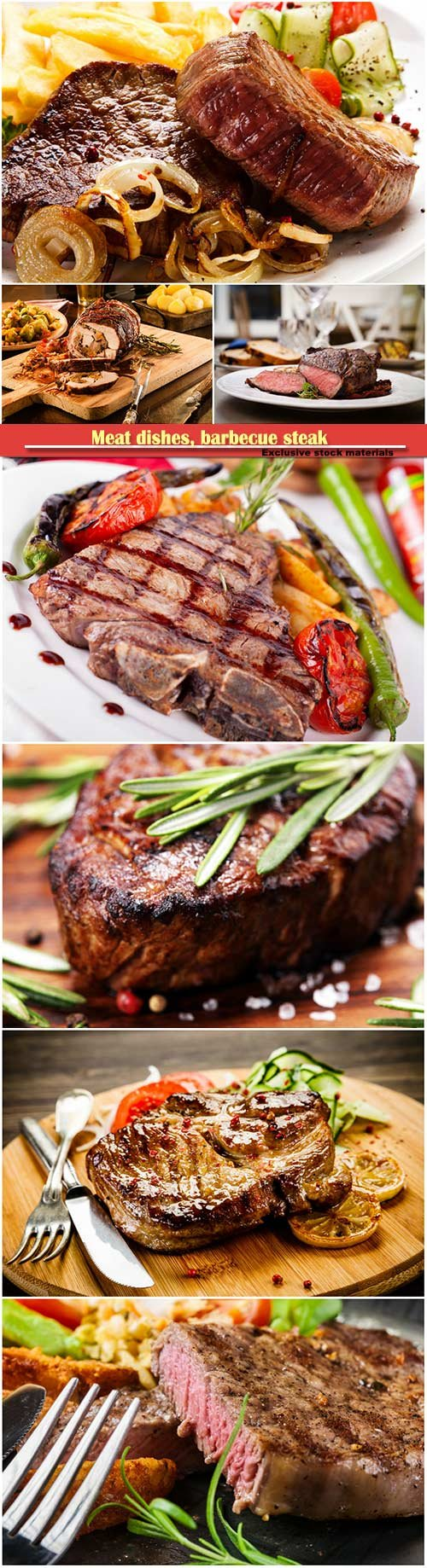 Meat dishes, barbecue steak