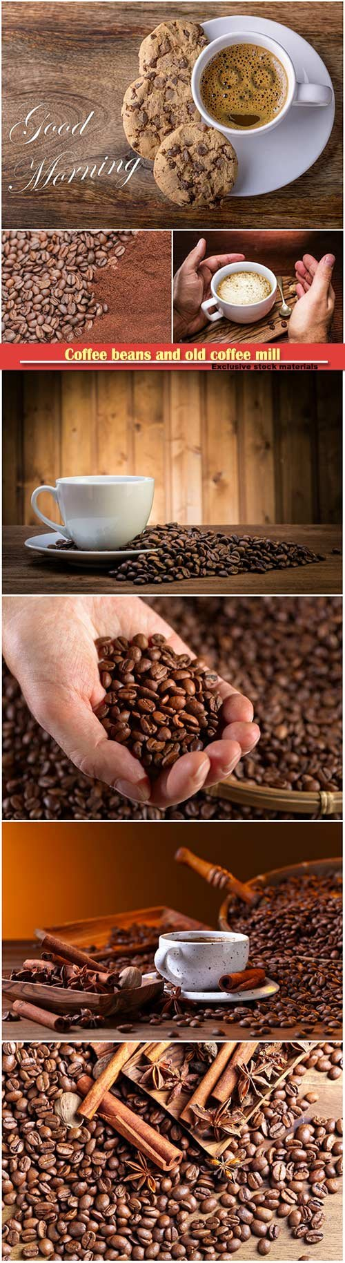 Coffee beans and old coffee mill