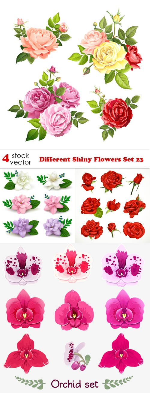 Vectors - Different Shiny Flowers Set 23