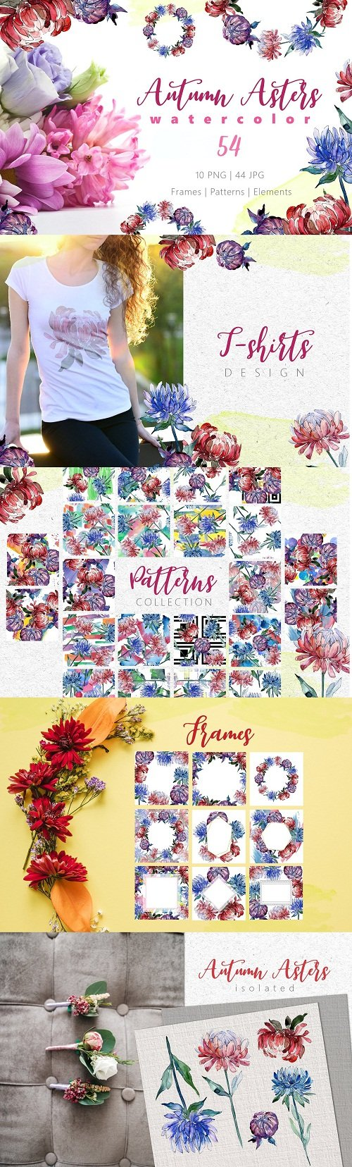 Autumn Asters Watercolor png - 3453032