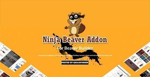 Ninja Beaver Addon v2.1 - Add-On For Beaver Builder Plugin