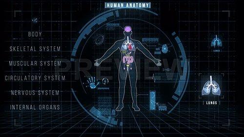 MA - Futuristic Interface of Anatomy Systems 140271