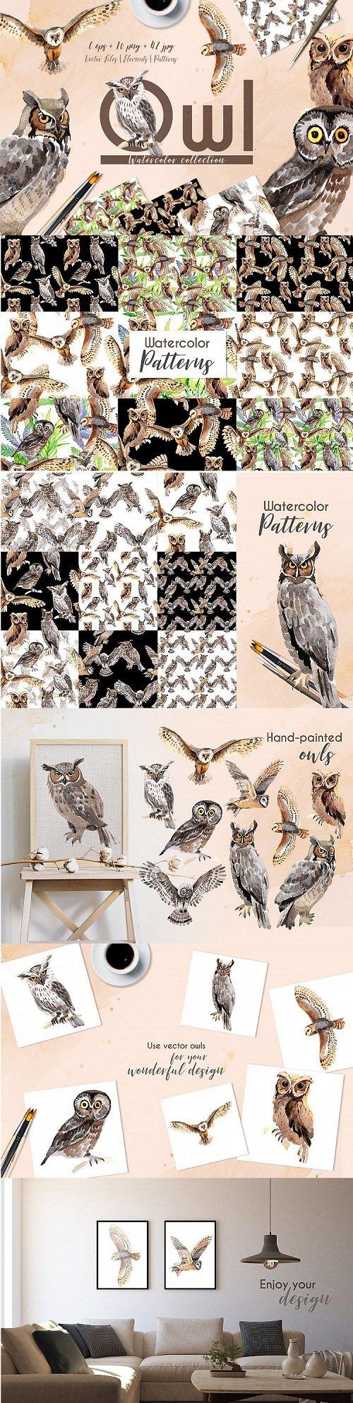Owl Watercolor png - 213376