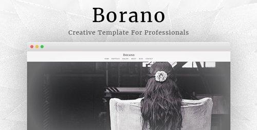 ThemeForest - Borano v1.46 - Photography / Portfolio WordPress Theme - 17170617