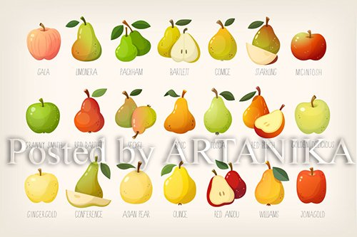 Pears and apples with names