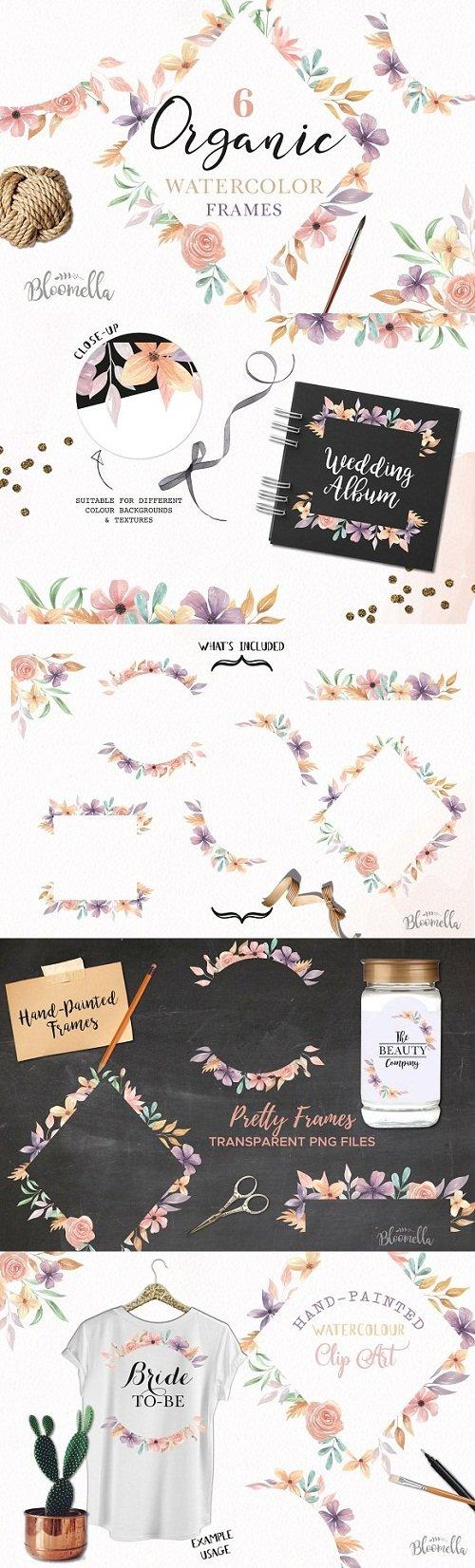 Floral Watercolour Flowers Frames - 3164885