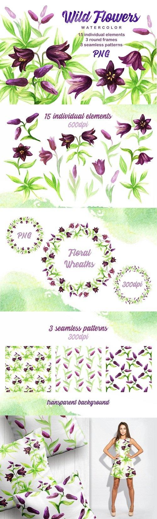 Wild flowers. Watercolor set - 111186